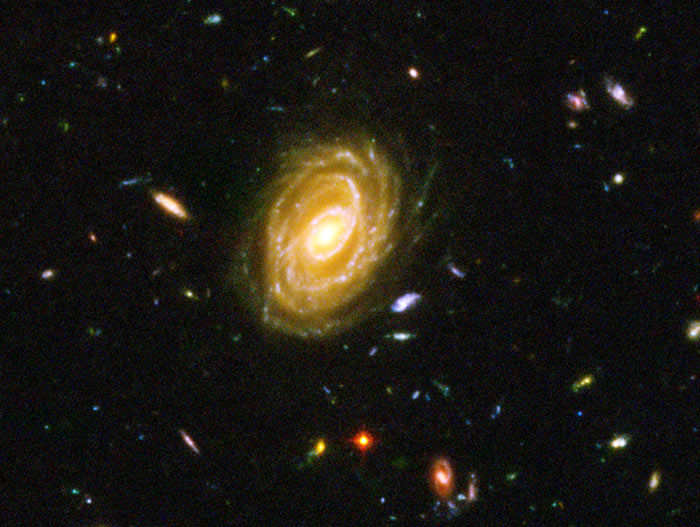 Hubble Ultra Deep Field Detail NASA